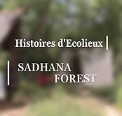 07 - Sadhana Forest.png