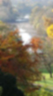 autumn-343317_1920.jpg