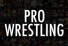 Pro Wrestling Preview Image.jpg
