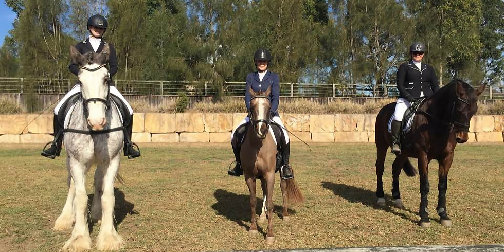 Poles & Grids Training with Tana Subotic-Holmes