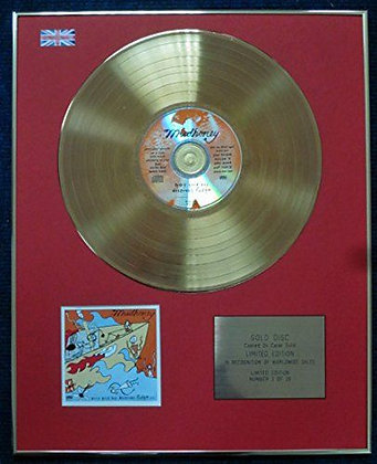 Mudhoney - CD 24 Carat Gold Coated LP Disc - Every Good Boy Deserves Fudge