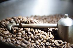 Coffee Bean Love