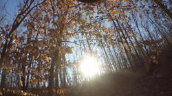 Photo Dec 06, 5 51 33 PM