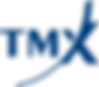 2000px-TMX_Group_logo.svg.png