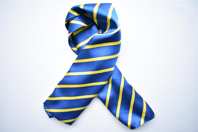 Navy Gold Satin Scarf
