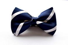 Stripe Bow Tie Navy