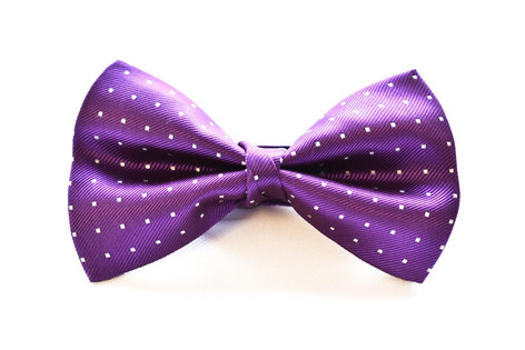 Small Dot Bow Tie Purple