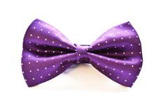 Small Dot Bow Tie Purple