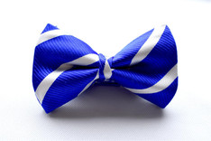 Stripe Bow Tie Blue