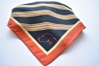 Panthers Custom Scarf