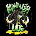 Mammoth Labs.jpg