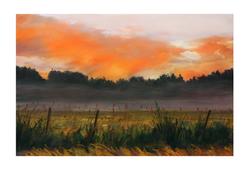 Fire in the Sky - Mist in the Fields
