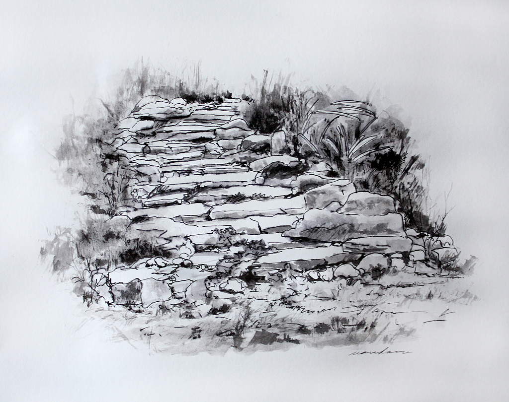 Stones and Steps Study