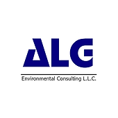 ALGconsultingsite.png