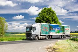 Foco_Truck_neu
