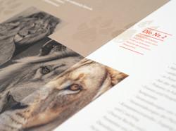 AMWERK_VIERPFOTEN-KAMPAGEN-Brochure06
