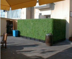 Artificial Boxwood Hedge