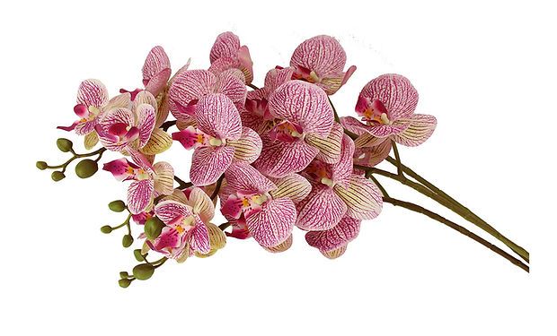 Flowers-01_1280x720.jpg