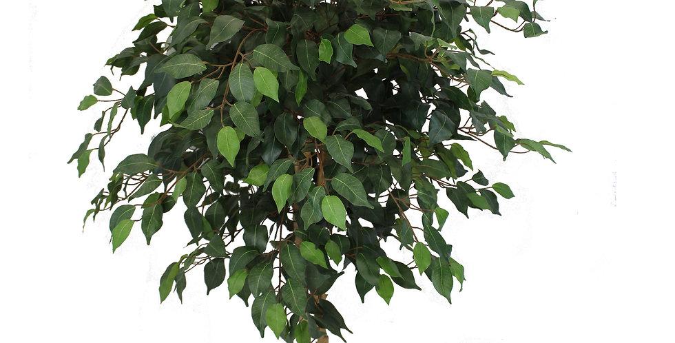 Decorative Ficus Silk Tree, Green 4 feet
