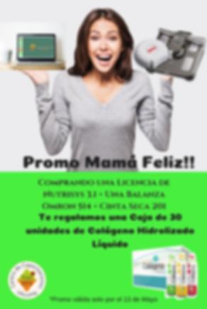 Promo Mama Feliz 2019.png
