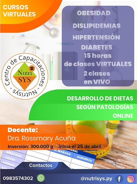 Contenido Afiche Dietas para patologias.