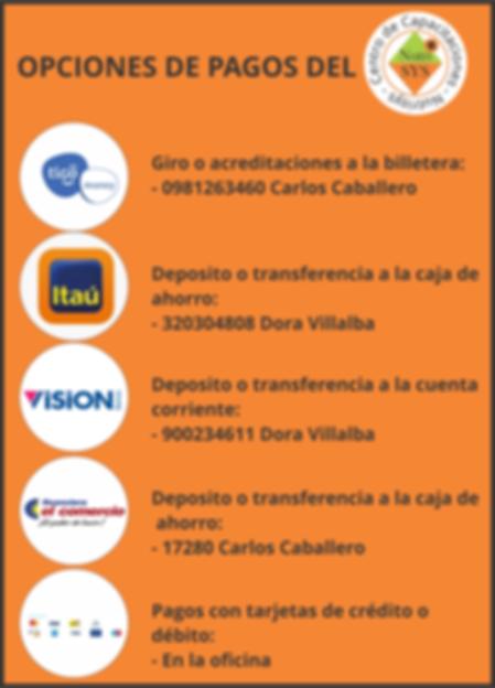 opciones de pago Nutrisys 2018.png