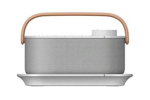 Sony SRSLSR200CE7 Speaker