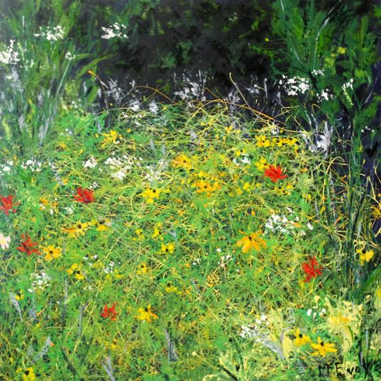 Thru the Wildflower Thicket