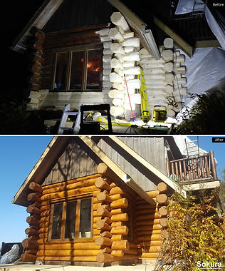 Log_Home_Restoration_ont2.jpg