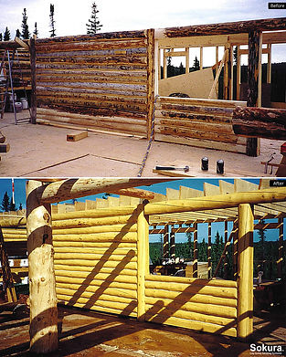Log_Shell_Restoration_nwt9.jpg