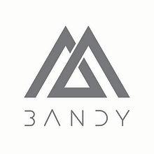 shiftmentor-bandy-logo.jpg