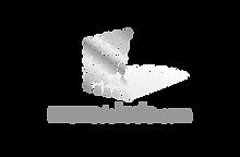 shiftmentor-logo ref MURS DE LEDS.png