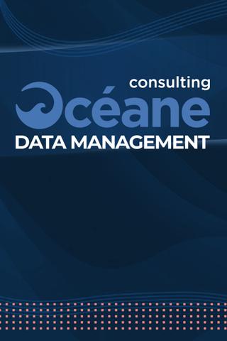 Shiftmentor agence de marketing digital pour Océane Consulting Data Management