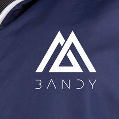 Logo Bandy