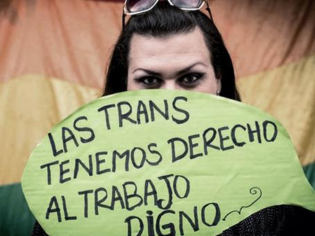 Cupo laboral trans: empleo público y rol sindical