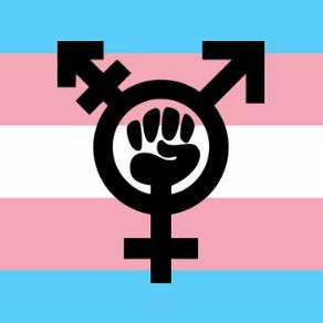 Transfeminismo, el compromiso real extinto