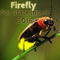Firefly2016.jpg
