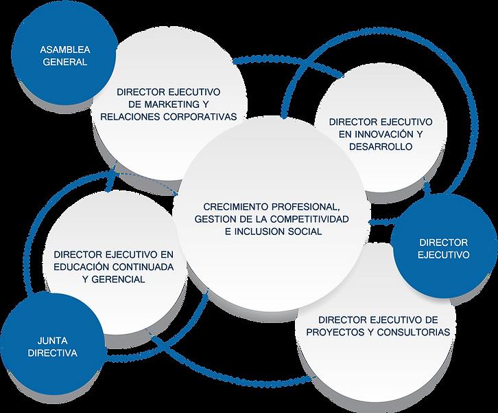 estructuraorganizacional.png