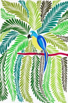 My Love Parrot