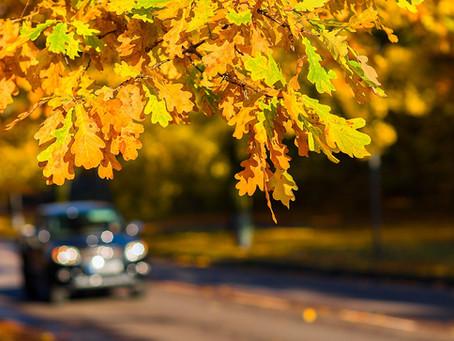 Herbst-Winter-Paket für nur 65,- €