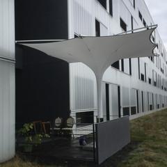 Grosser Tulpenschirm von IPOMEA