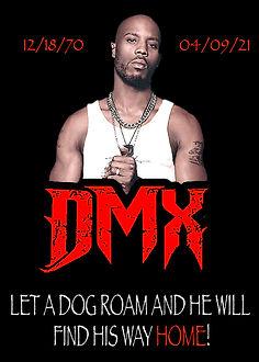 DMX Portrait2.jpg