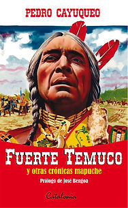 TapaFuerteTemuco.jpg