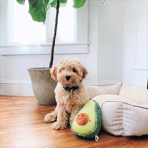 NomNomz® Avocado Squeaker Plush Toy
