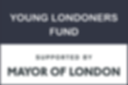 YOUNG LONDONERS FUND Home Page Icon 300x