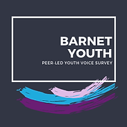 Barnet Youth Icons 300x300 (1).png