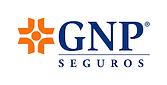 Ambulancia Aerea GNP seguro
