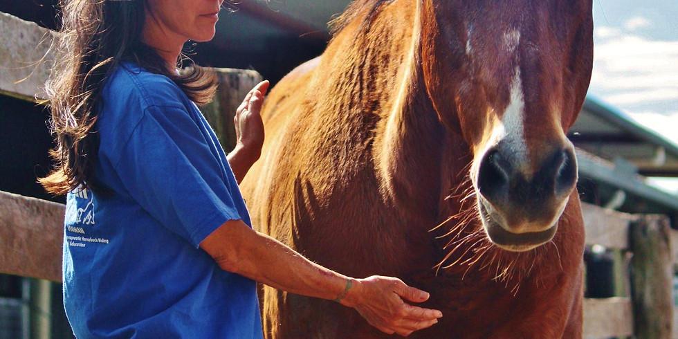 Reiki I and Animal Reiki Training:  The Basics (Aug. 17-18)
