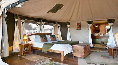 Elephant-Bedroom-Camp-1.jpg