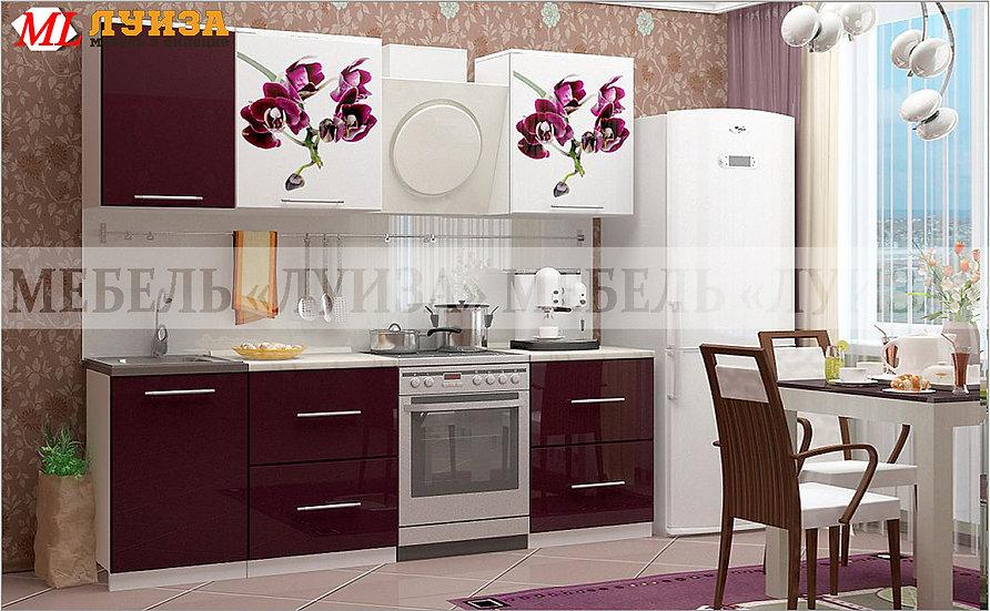 Кухонный гарнитур Ф-41 (1,7 м)